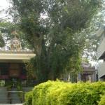 Sri Ramanjaneya Swamy, Sri Shaneshwara Swamy, Sri Subramanya Swamy Temple
